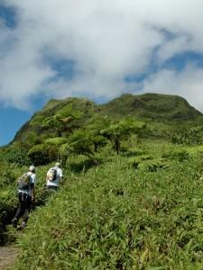 Ascension de la Montagne Pelée en Martinique