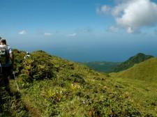Randonnée autour de la Montagne Pelée en Martinique