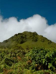 Le sommet dégagé de la Montagne Pelée en Martinique