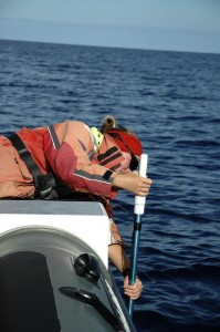 Une biologiste plonge le sonar pour détecter des cachalots