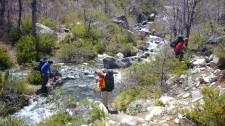 Parc naturel Tricahue (Chili)