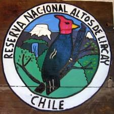 La réserve nationale d'Altos de Lircay (Chili)