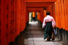 Les célèbres torii rouges du sanctuaire shinto Fushimi Inari à Kyoto
