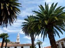 Extension Villes coloniales– Palmiers resplendissants à Sucre