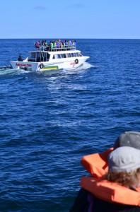 En transit sur le lac Titicaca