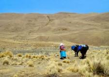 Extension Montagne– Marche d'approche