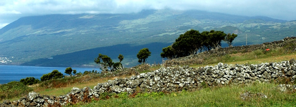 Açores – Randos, baleines et causeries