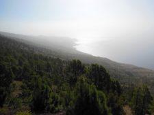 L'île arbore aussi une grande forêt de pins