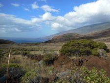 Paysage typique de l'île