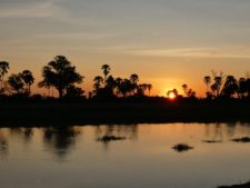 Superbe coucher de soleil sur les marais du delta