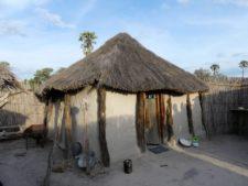 Habitation traditionnelle d'un village du delta de l'Okavango
