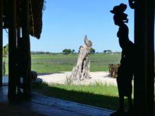 Lodge en plein delta, immersion totale